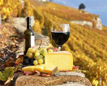 Wine Experience|Visita às Caves Velhas + Prova de Vinhos + Degustação