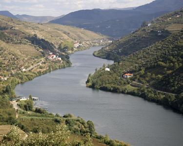 De Barco pelo Douro Histórico e Rural