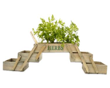 Mini Horta | Modelo Desdobrável
