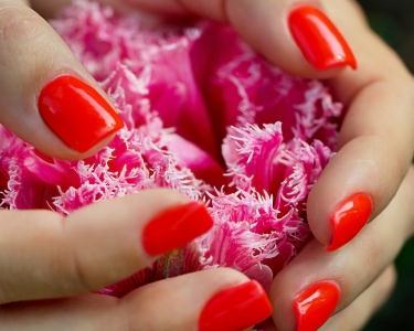 Manicure e Pedicure + Verniz de Gel