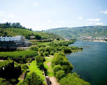 1 Noite & SPA | Douro River Hotel&SPA