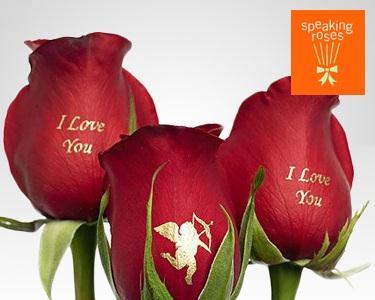 Speaking Roses - Mensagem Romântica