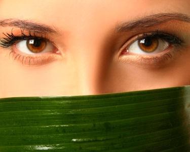 3 Envolvimentos Corporais com Algas - Be Slim
