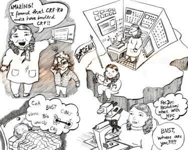 A Tua História em Banda Desenhada