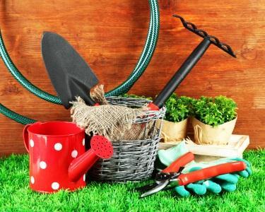 Workshop Hortas Sustentáveis & Reciclagem