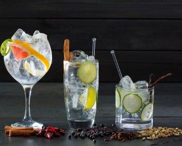Truques & Segredos do Gin Tónico | Workshop Premium - 3h | Lisboa