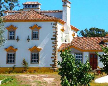 Noite na Quinta dos Ribeiros | Alentejo Nature & Relax