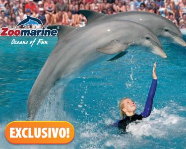 Exclusivo | Zoomarine - Um Mundo Aquático