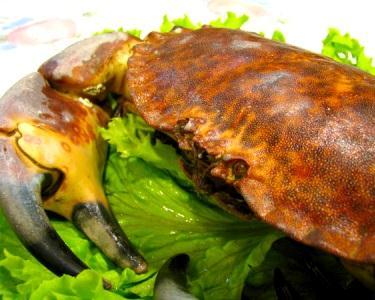 Mariscada & Sobremesa no restaurante Solar Beirão | Cacilhas