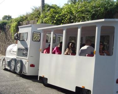 Passeio de Magic Train pelas Caves c/ Prova de Vinho | Ofereça Cultura