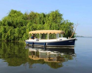 Passeio de Barco em Família | Observação de Aves