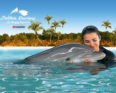 Entrada Zoomarine & Interação com Golfinhos para 2 Pessoas