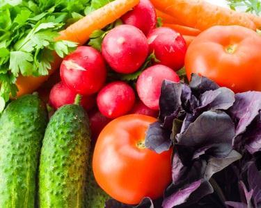 Teste Intolerância Alimentar c/Reeducação de Hábitos