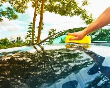 Limpeza Premium | Lustro com Cera | Higienização AC | Pára-Brisas