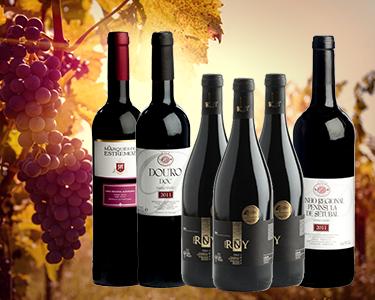 Vinhos Seleccionados Clube do Vinho