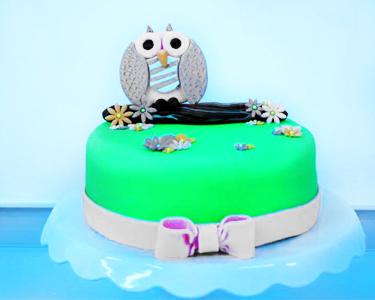 Curso de Cake Design 4h    Nível I ou II