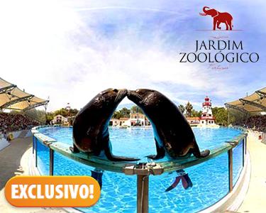 O Natal chegou ao Jardim Zoológico | Bilhetes & Espectáculo