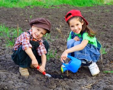 As Hortas em Família | Aprender a Cuidar & Fazer Crescer
