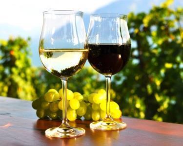 Workshop de Degustação de Vinhos c/ Certificado | Portoforma