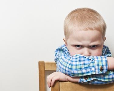 2 Workshops | Limites: Kit Anti-birras | Febre na Criança: Como Actuar