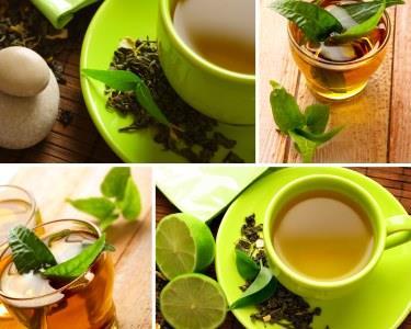 Deguste e aprecie vários tipos de Chá | Workshop de Chá