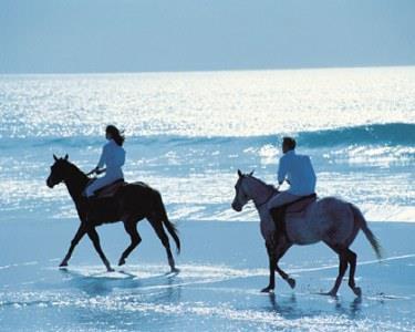 Um Passeio Romântico a Cavalo no Dia dos Namorados | Aveiro