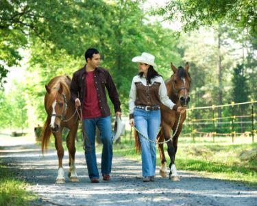 Romance & Passeio de Cavalo a 2 | Porto