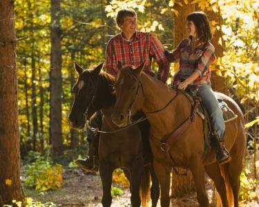Um Passeio Romântico a Cavalo | Aveiro