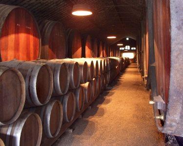 Cruzeiro 6 Pontes + Visita às Caves + Prova de Vinho do Porto