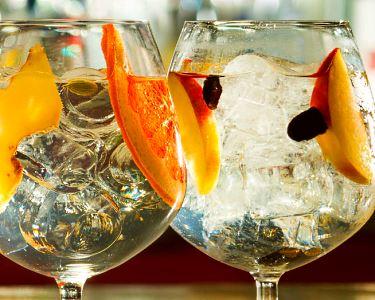 Degustação de 5 Gins   Viva o Espírito Gin Lovers   Alvalade