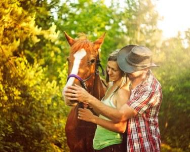Presente Perfeito: Passeio Romântico de Cavalo à Beira Rio   Aveiro