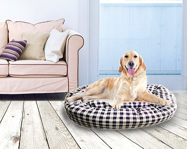 Cama Grande para Cão | Fácil de Lavar e Transportar!