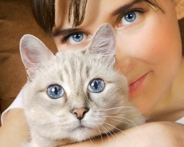 Pet Sitting para Gatos | Cuide do Seu Amigo!