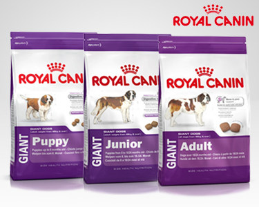 Ração Royal Canin® Giant 15 Kg | Puppy, Junior ou Adult