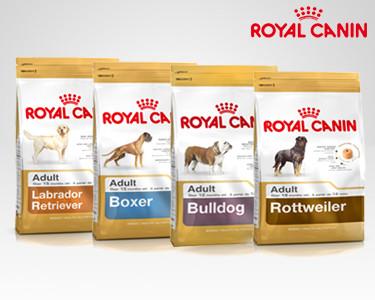 Royal Canin® Adult | Labrador, Boxer, Rottweiller ou Bulldog