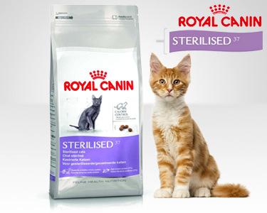 Royal Canin® Sterilised 37 - 4kg | Para Gatos Adultos de 1 a 7 Anos