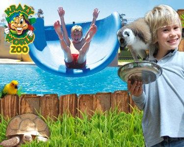 Krazy World Zoo - Um Mundo Mágico! Bilhete de Criança