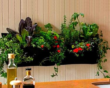 Faça o seu Jardim em Casa | Suportes para Jardinagem
