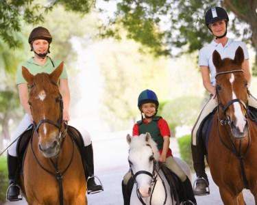 Passeio a Cavalo para 2 ou 4 Pessoas | Uma Experiência Inesquecível!