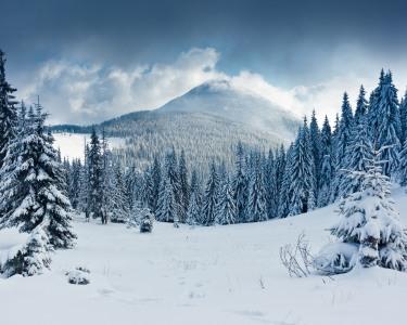 Neve na Serra da Estrela - 1, 2 ou 3 Noites em Apartamento T1