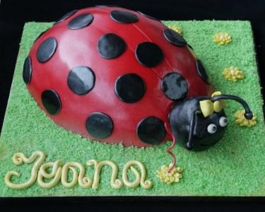 Workshop Cake Design | Nível I ou Nível II - A Magia do Açucar