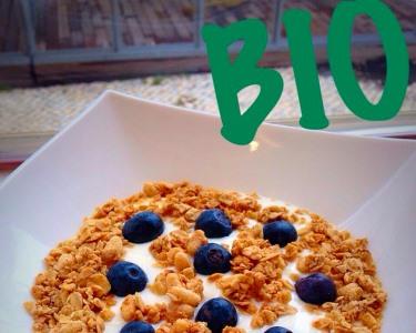 Mimo Gourmet 100% Natural | Taça de Iogurte Biológico + 2 Toppings