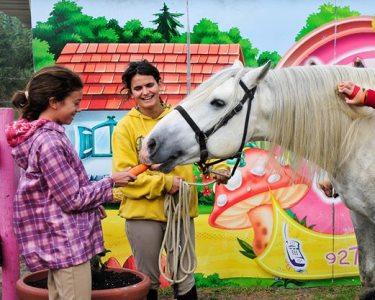 Aventura na Natureza   Passeio de Pónei e Burro + Interacção c/ Cavalo
