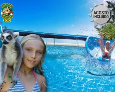 Krazy World Zoo   1 Dia de Máxima Diversão na Natureza