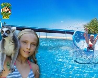 Krazy World Zoo | 1 Dia de Máxima Diversão na Natureza