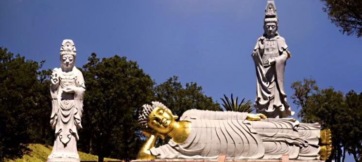 Peniche em Família! Noite c/ 2 Entradas no Buddha Eden Jardim da Paz