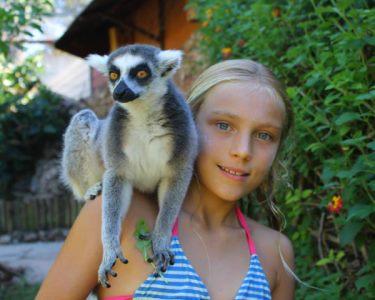 Krazy World Zoo | Festeje o Carnaval no meio da Natureza!