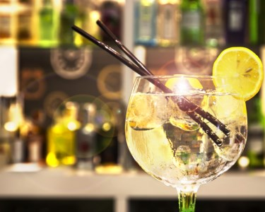 Cruzeiro no Douro com Prova de Gin | Até 10 Pessoas | Douro Goleta