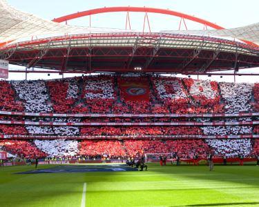 Visita ao Museu + Oferta Cachecol + Visita ao Estádio | Pack Benfica