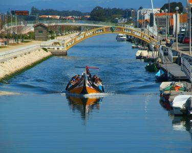 Circuito em Moliceiro + Visita às Salinas a Dois | Paixão em Aveiro